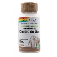 Crinière de Lion (60 capsules végétales de 500 mk)