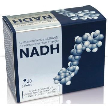 NADH + L.Carnitine + L.Taurine (20 gél. de 543 mg)
