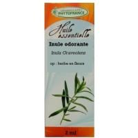 Huile Essentielle inule odorante (op : herbe en fleurs) 2 ml