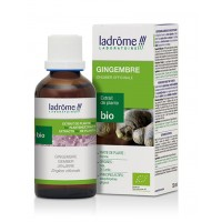 Extrait de gingembre BiO (50 ml)