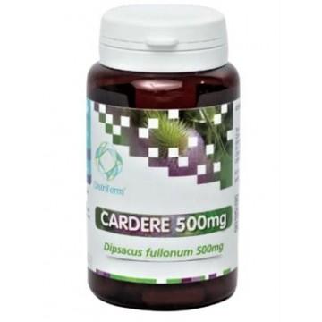 Cardère (60 gélules végétales dosées à 500 mg)