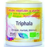 Triphala Gélules de plantes Ayurvédiques (60 gélules vcégétales de 450 gr)