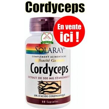 Cordyceps (60 capsules végétales dosées à 500 mg)